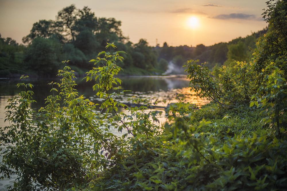 "photo ""***"" tags: , pond, river, summer, sunset, water, Григорчиково, Пахра"