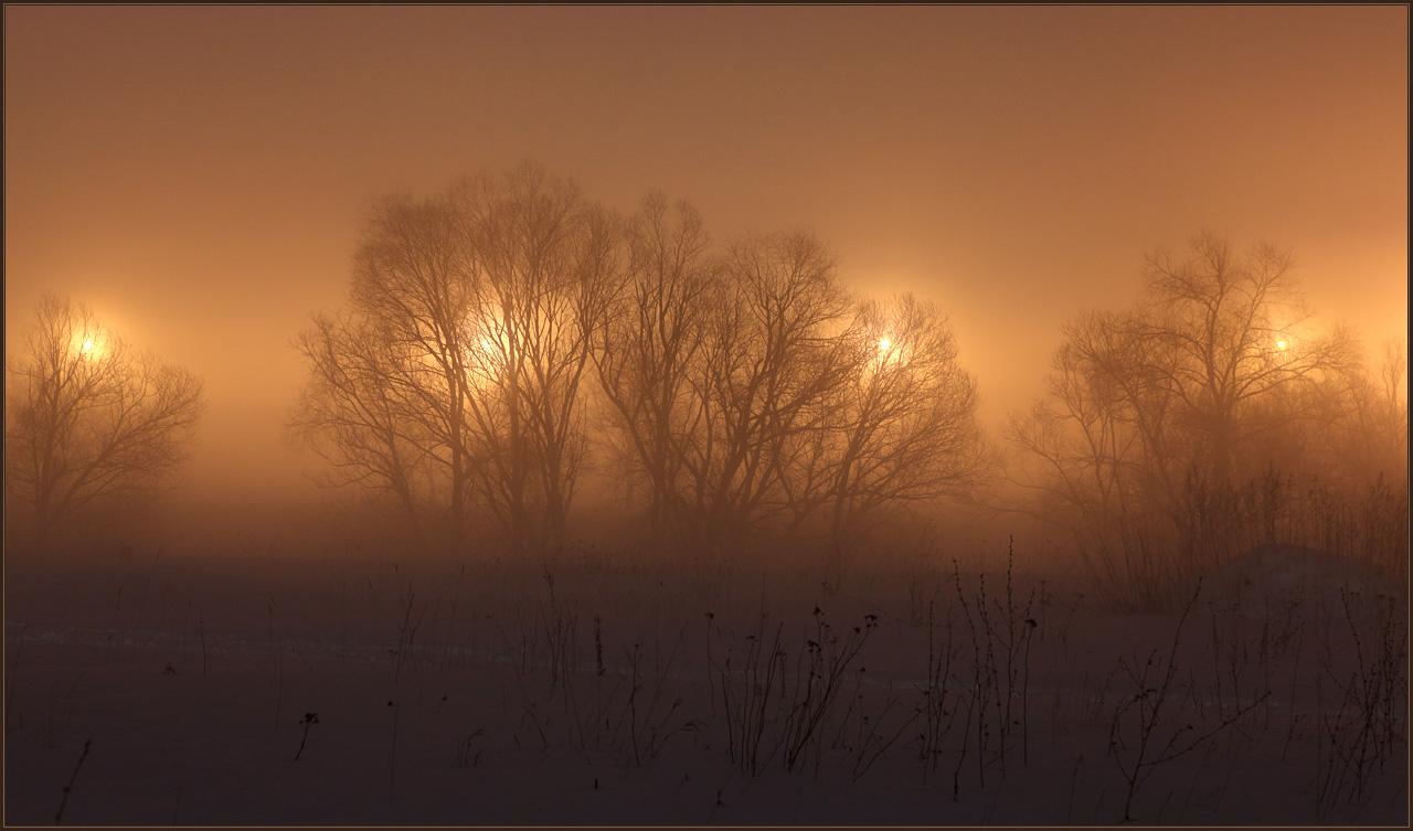 фото туманная ночь в россии каждые