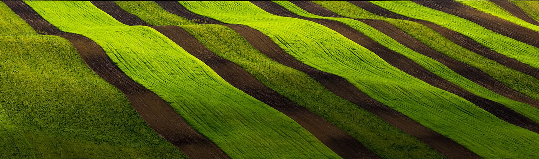 "photo ""***"" tags: panoramic, nature, Balkhovitin, Landscape, field, photographer, spring, Чехия, Южная Моравия, путешествие"