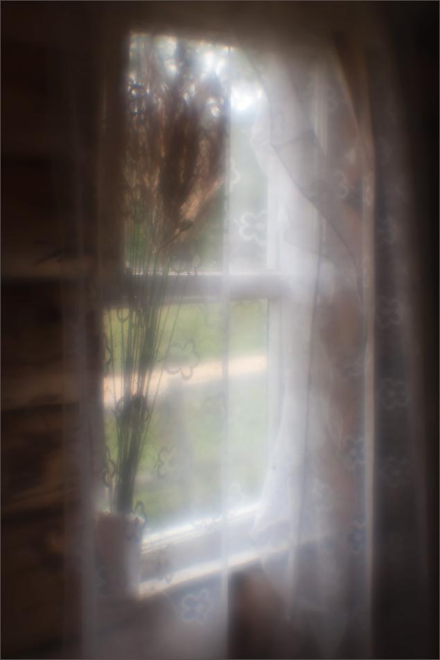 """фото """"Вся жизнь..."""" метки: , дом, жизнь, лето, монокль"""