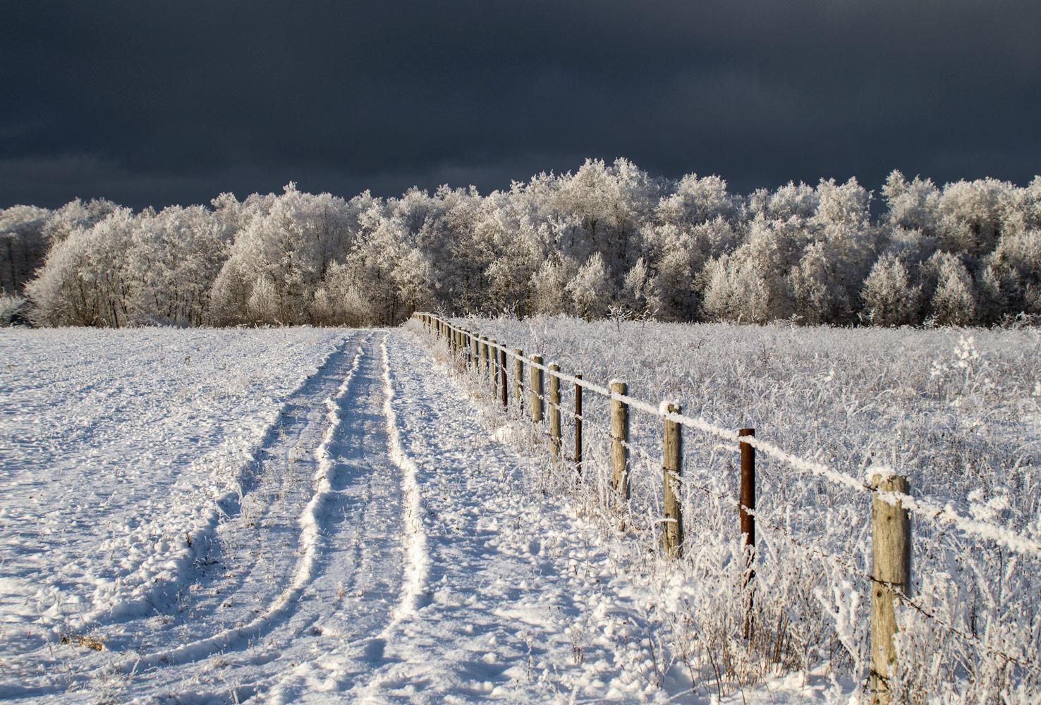 поля зимой фотографии коммутационные шкафы