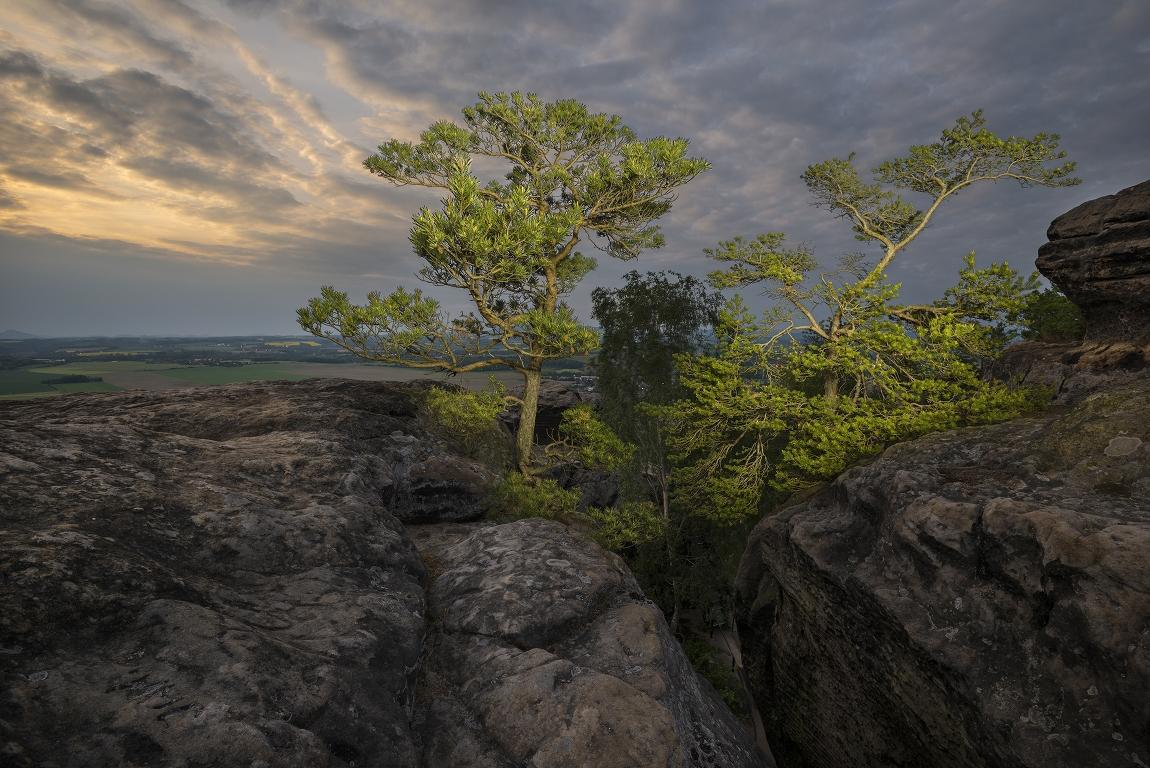 """photo """"Близнецы противостоящие бурям"""" tags: landscape, nature, misc., sky, sunset, пейзаж, писание светом, скала, скальный город, сосна"""