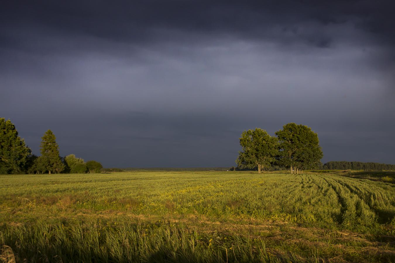 "photo ""Золотой час"" tags: landscape, travel, nature,"