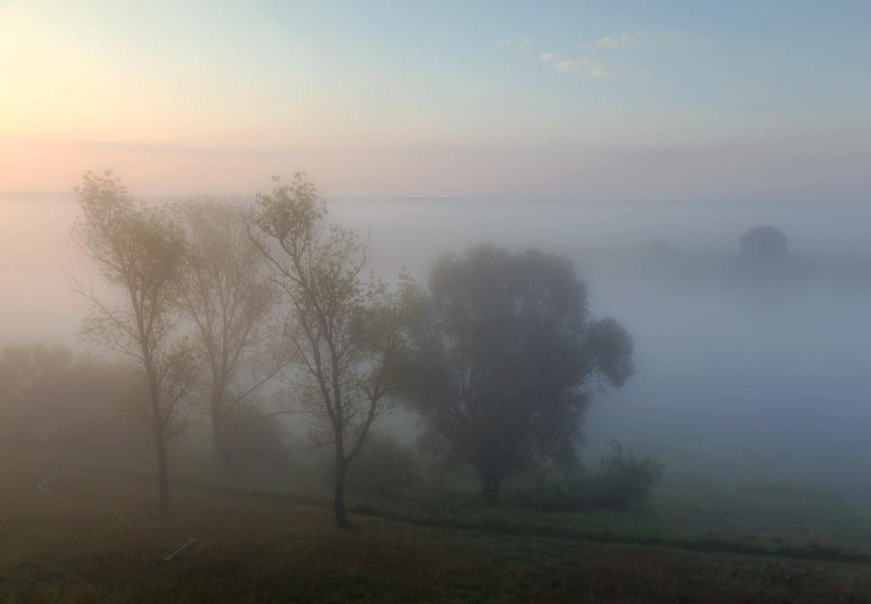 "фото ""Тишина осени"" метки: пейзаж, природа, Ока, осень, рассвет, тишина, туман"