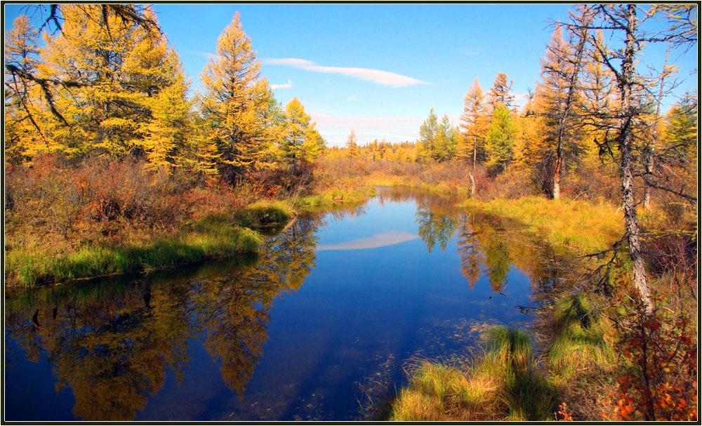 удачного природа якутии золотая осень картинки говорить тату компаса