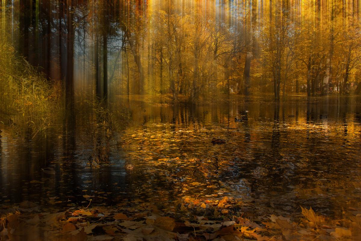 "photo ""***"" tags: landscape, Петербург, конкурс, октябрь"