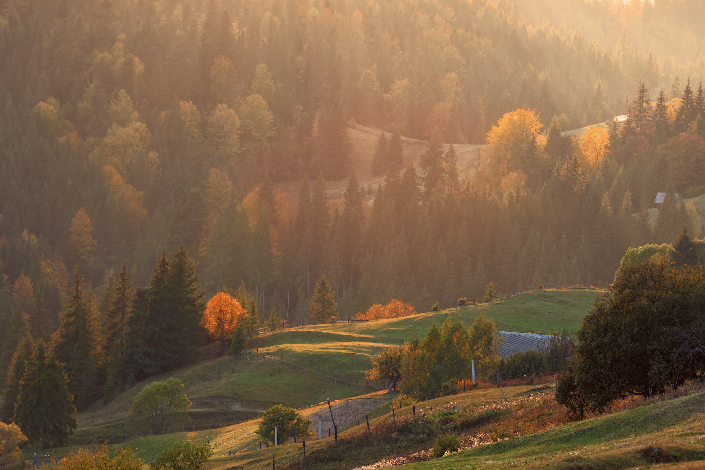 "photo ""***"" tags: , autumn, forest, mountains, sunset, Карпаты, домик, закарпатье, склоны"