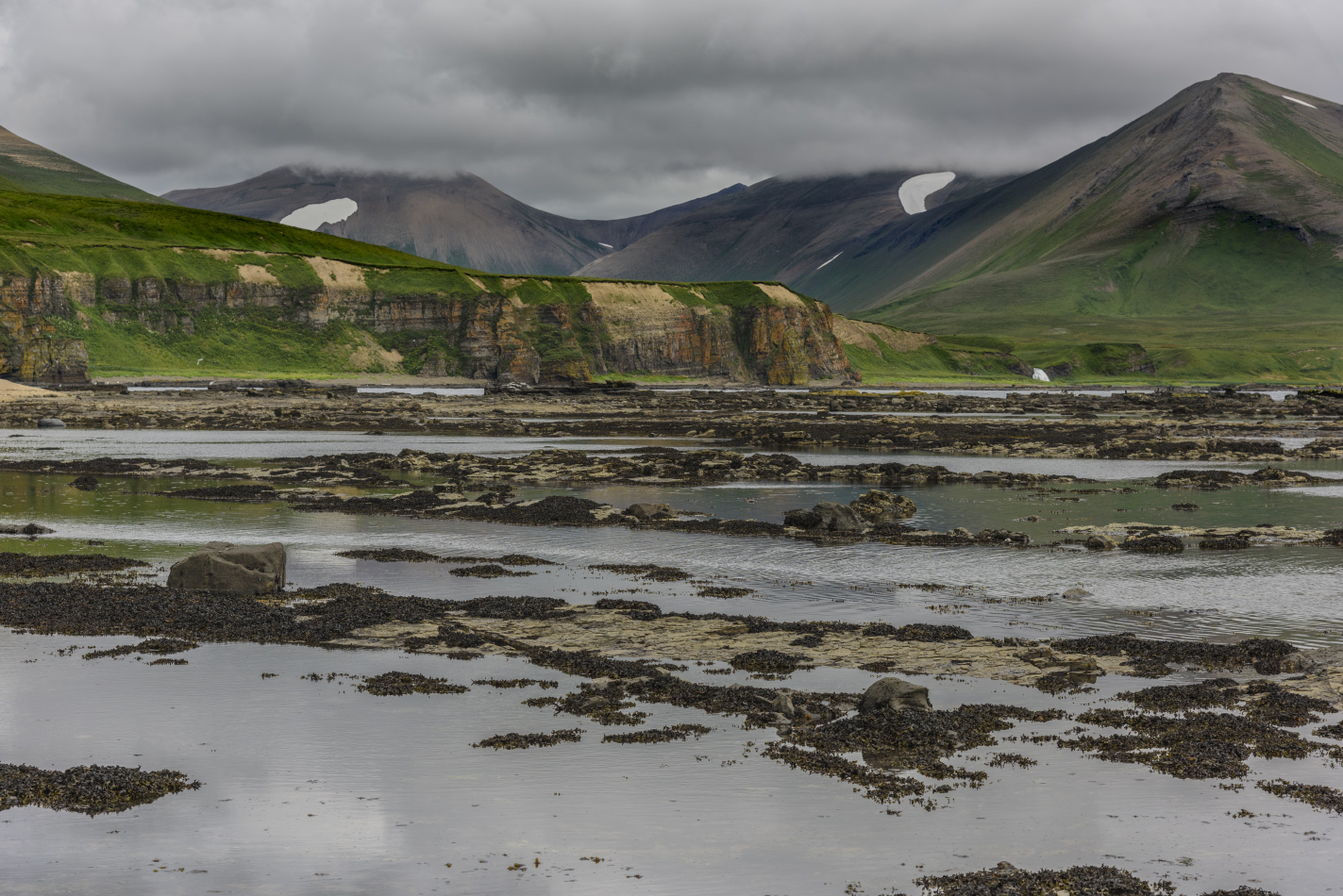 "photo ""***"" tags: travel, landscape, island, sea, summer, Камчатка, Командорские острова, остров Беринга, путешествие"