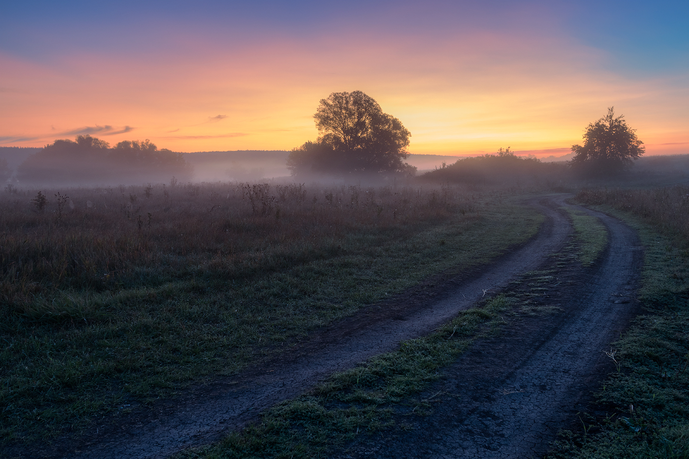 "photo ""***"" tags: landscape, autumn, fog, meadow, morning, road, sunrise"