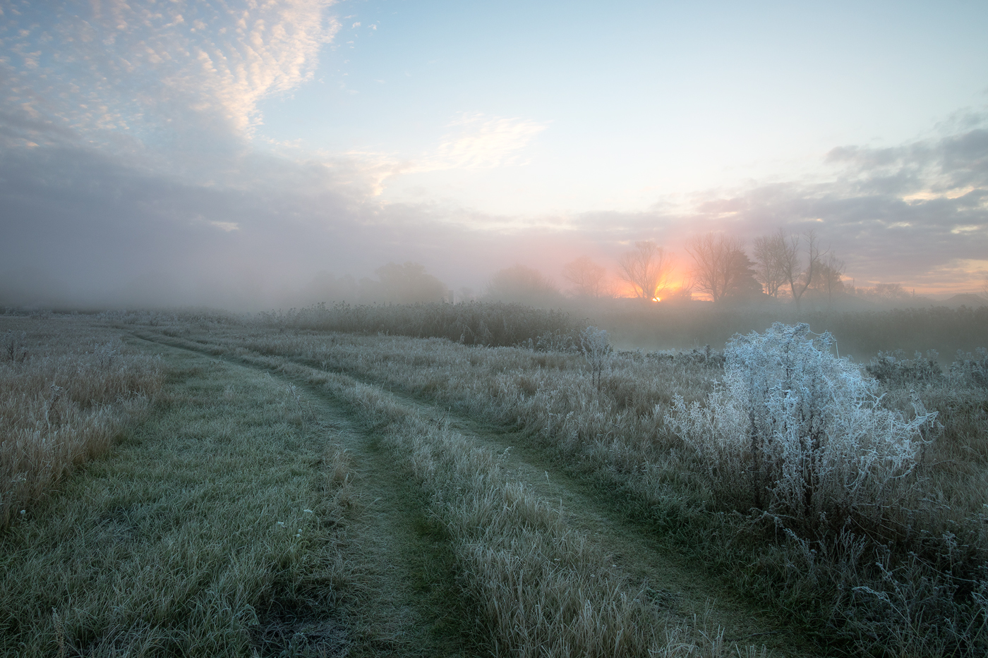 "photo ""***"" tags: landscape, clouds, grass, hoarfrost, meadow, morning, sunrise, заморозки"