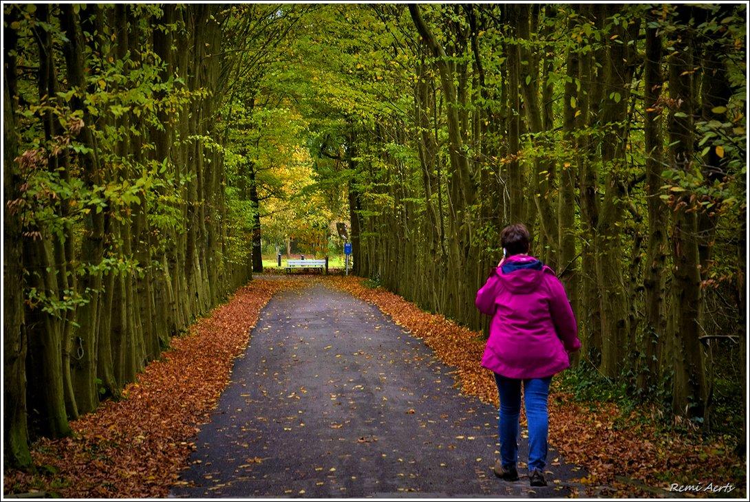 """photo """"***"""" tags: landscape, nature, portrait,"""