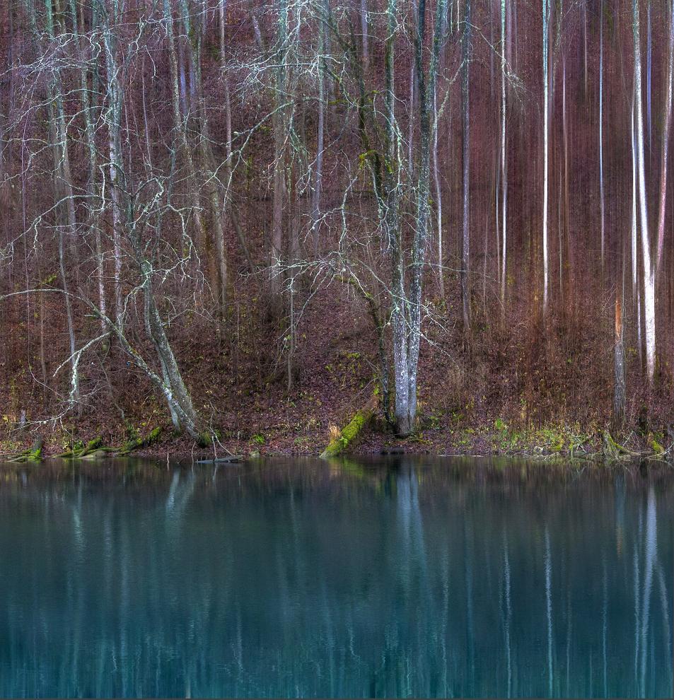 """photo """"***"""" tags: landscape, nature, lake, Лопухинка, деревья, ноябрь, отражение"""