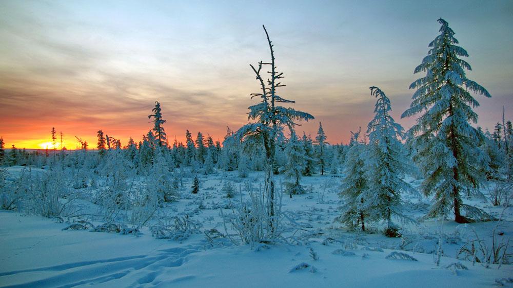 Кемпинг морозовск фото побережье рядом