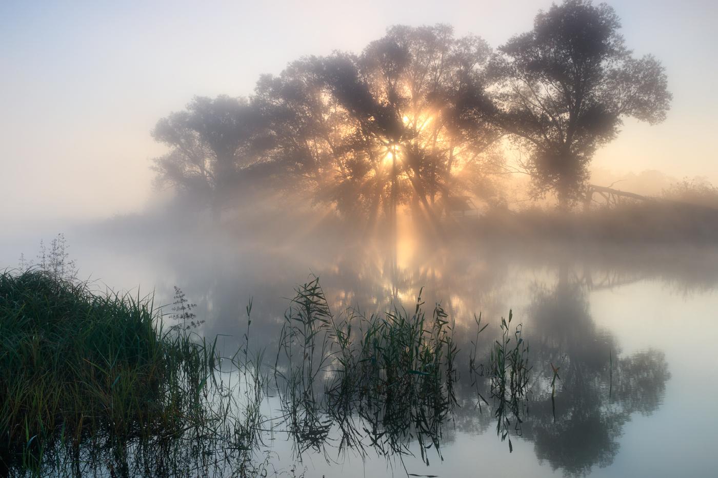 "photo ""***"" tags: landscape, fog, river, sun, sunrise, water, деревья, отражение"