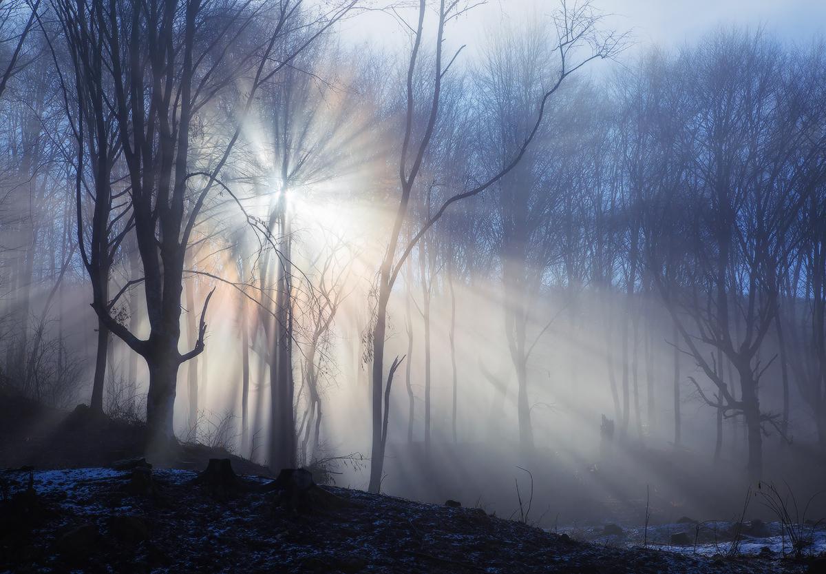 """фото """"Сквозь туман..."""" метки: ,"""