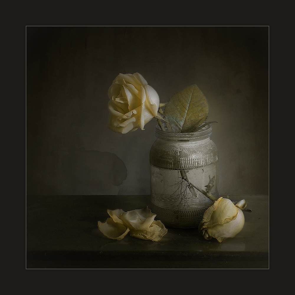 "photo ""***"" tags: still life, digital art,"