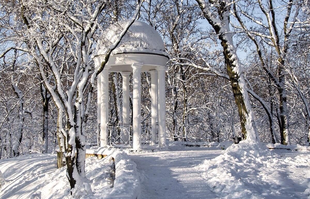 """фото """"В зимнем парке"""" метки: пейзаж,"""