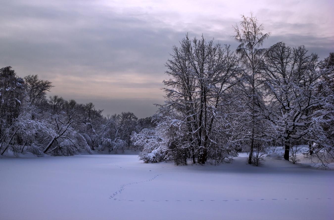 "фото ""Сиреневые сумерки"" метки: природа, пейзаж,"