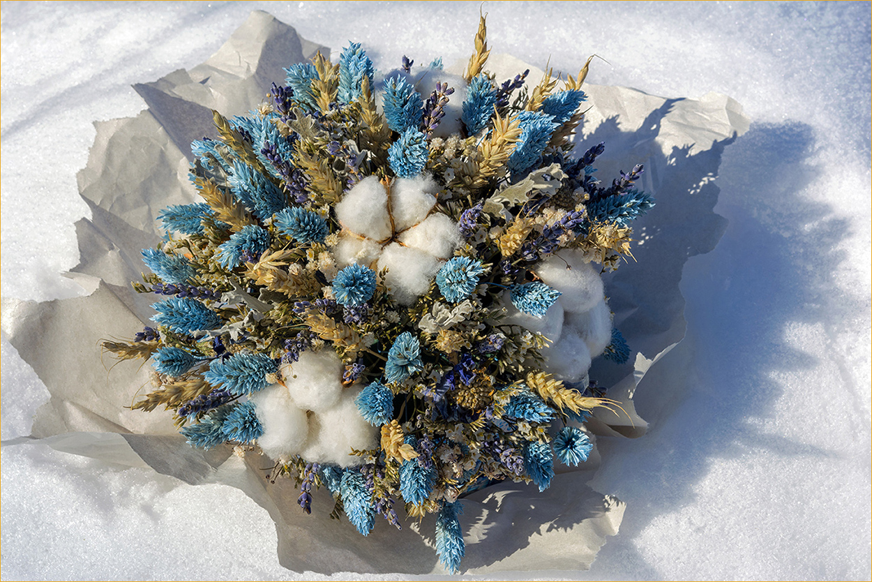 "photo ""***"" tags: still life, flowers, snow, букет, тени"