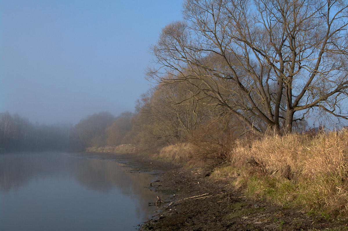 "photo ""***"" tags: landscape, city, autumn, river, water, Десна, деревья"
