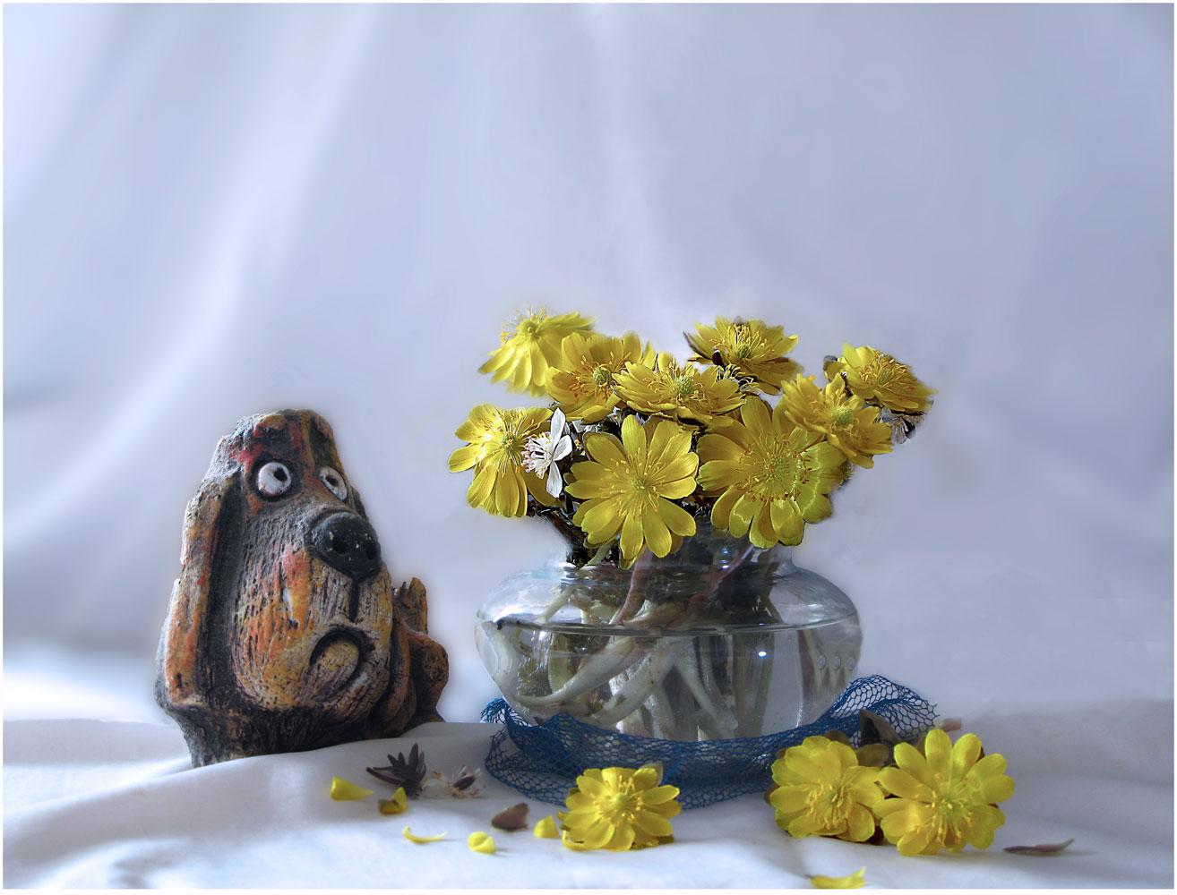 """photo """"***"""" tags: still life, spring, цветы."""