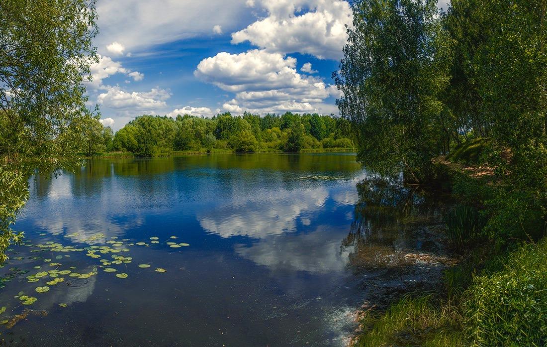 того, тихая заводь картинки река озеро станции борки