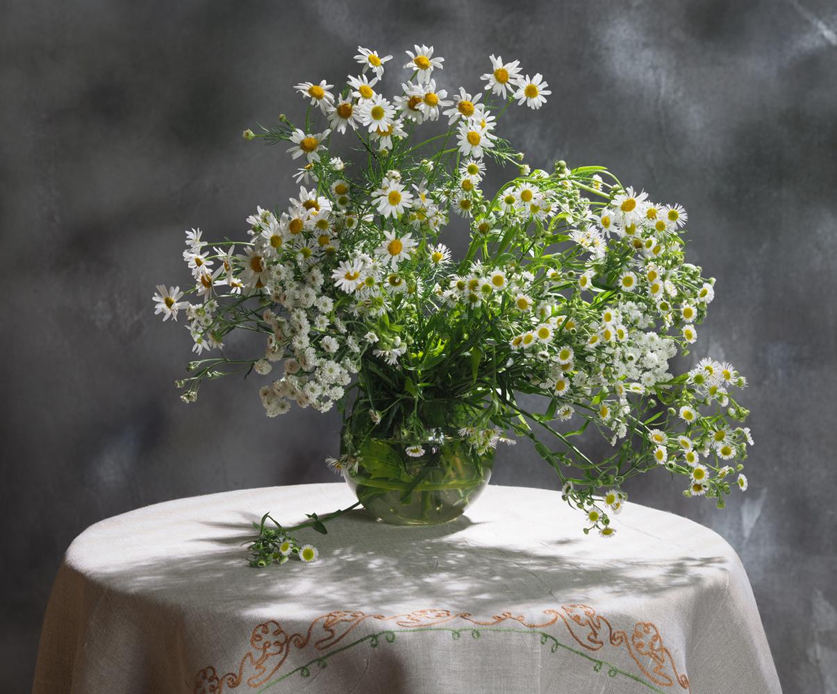 "photo ""***"" tags: still life, flowers, букет, ромашки"
