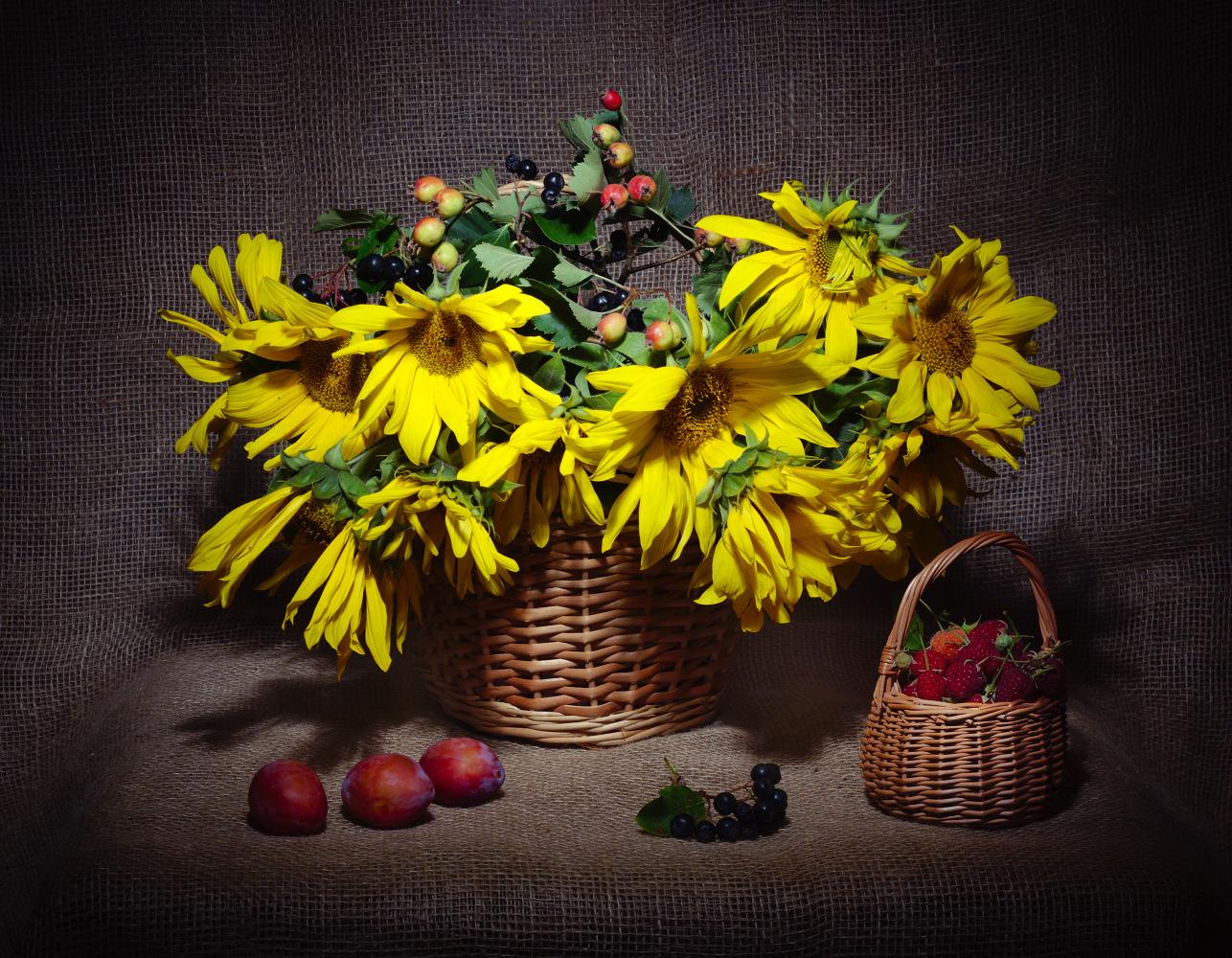 """photo """"***"""" tags: still life, sunflowers, боярышник, корзинка, малина, сливы"""