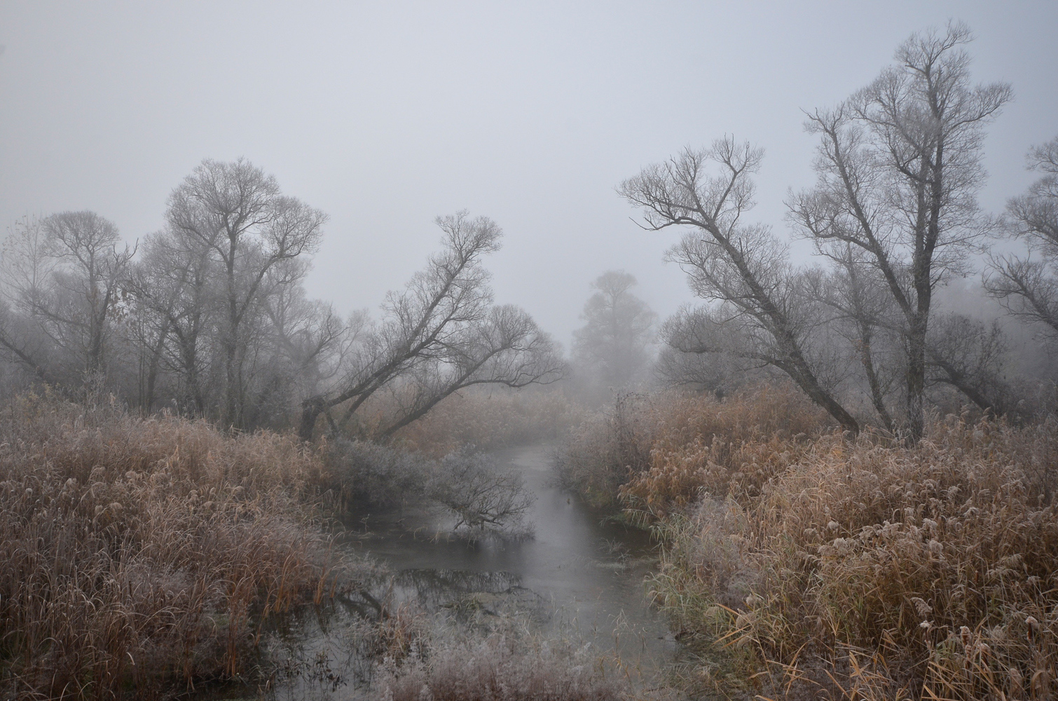 "photo ""***"" tags: landscape, autumn, fog, morning, river"