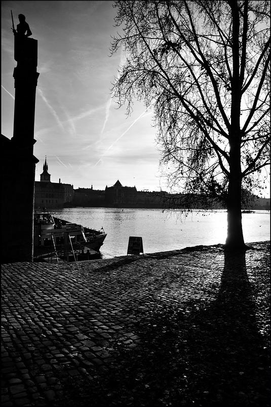 "photo ""Статуя и дерево"" tags: black&white, Prag, Prague, Praha"
