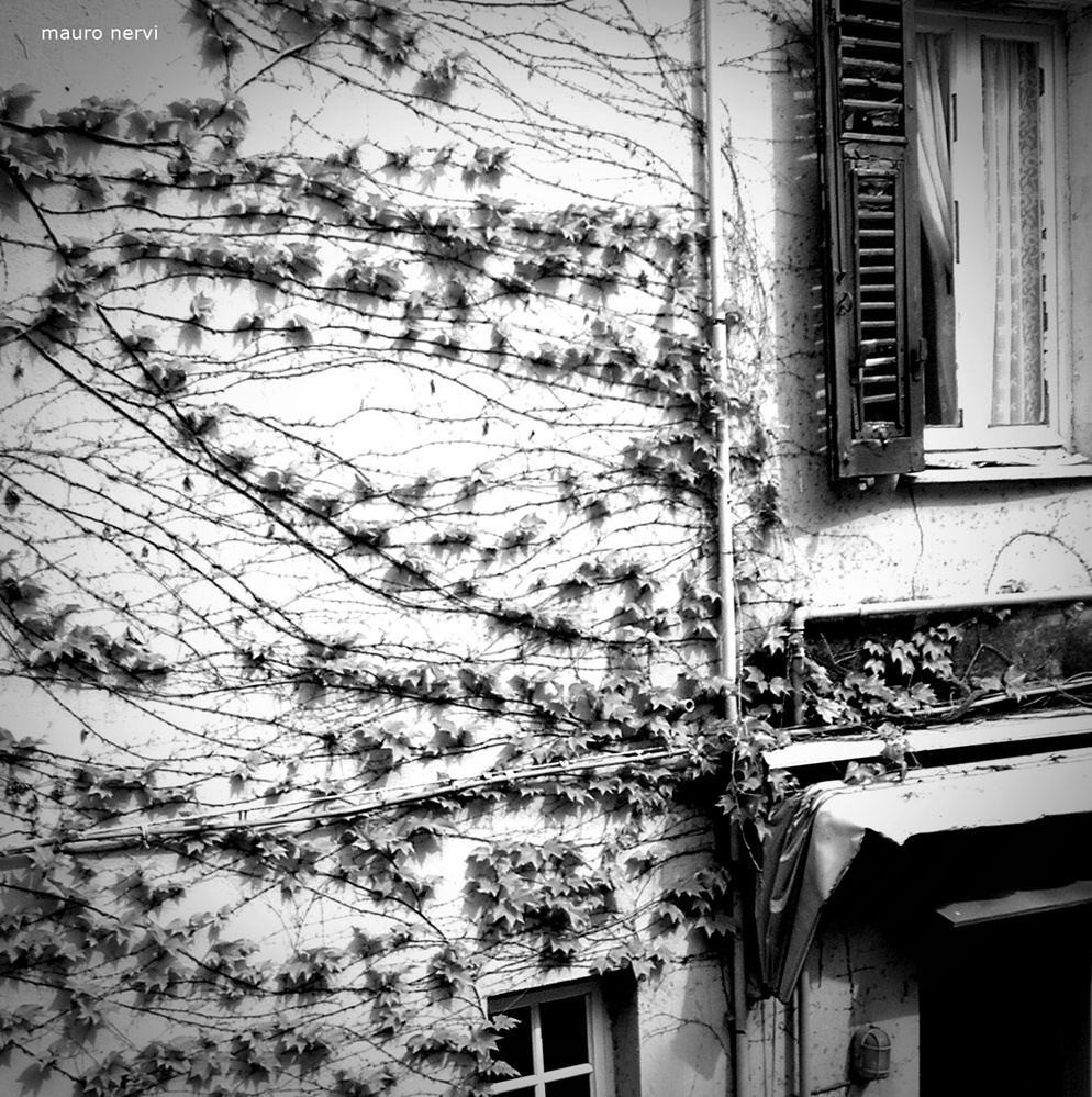 """photo """"the wall"""" tags: black&white,"""
