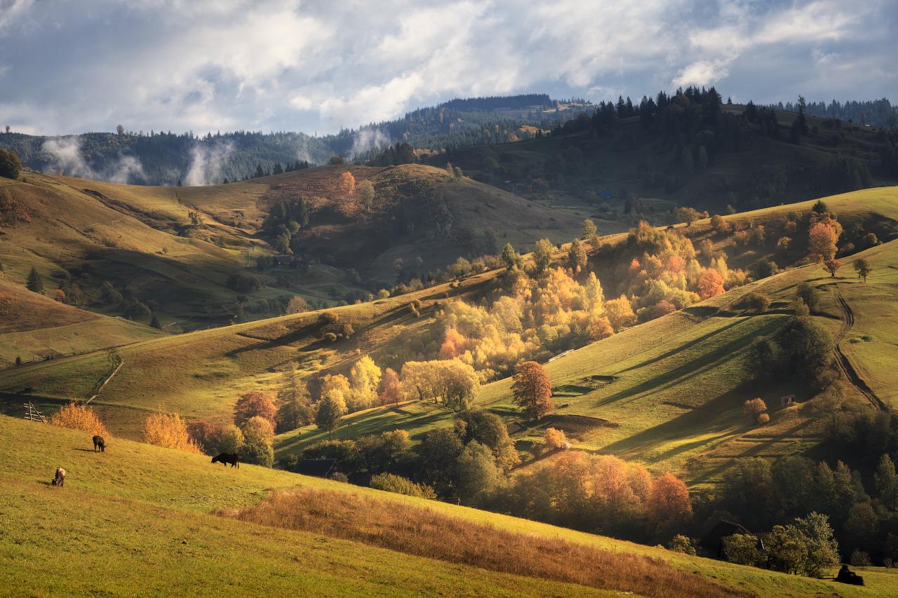 "photo ""***"" tags: landscape, travel, nature, autumn, Карпаты, Ясиня, домик, закарпатье, склоны"