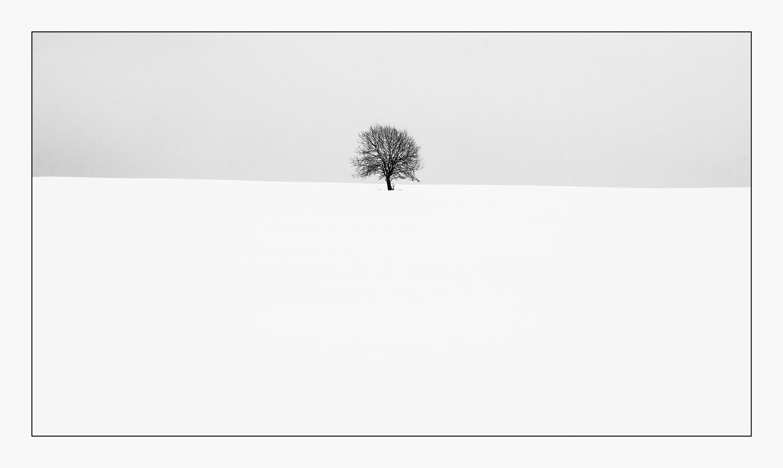 "photo ""***"" tags: landscape, black&white, nature,"