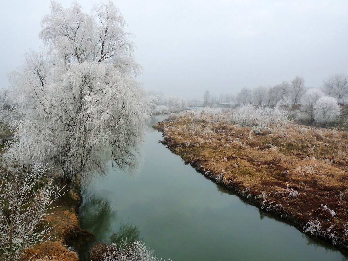 """photo """"***"""" tags: nature, winter"""