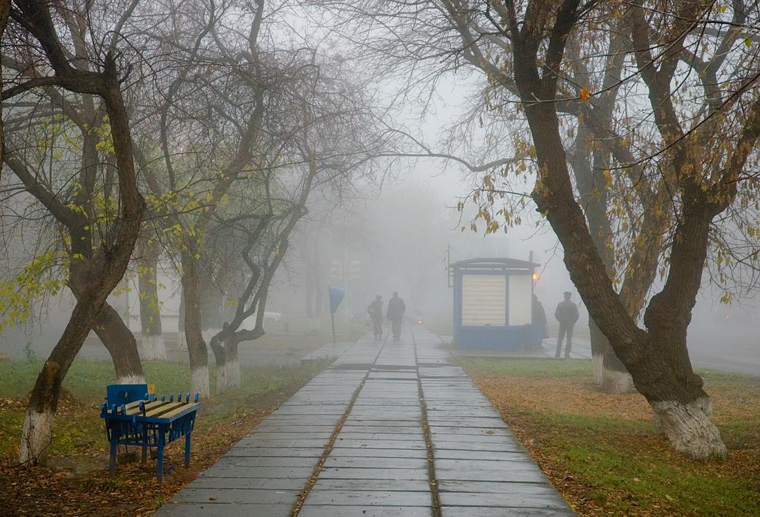 """photo """"***"""" tags: street, autumn"""