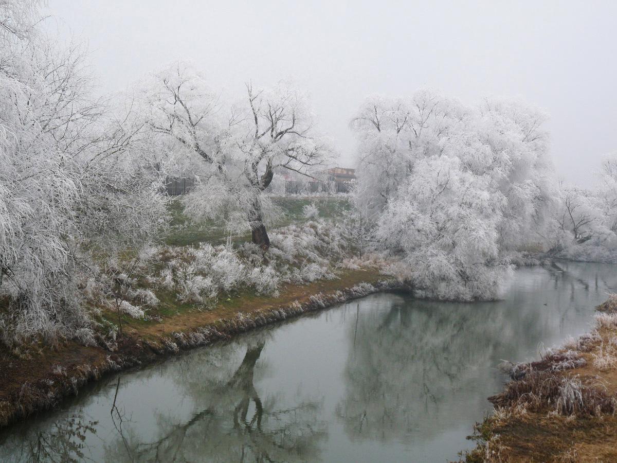 """фото """"***"""" метки: природа, зима"""