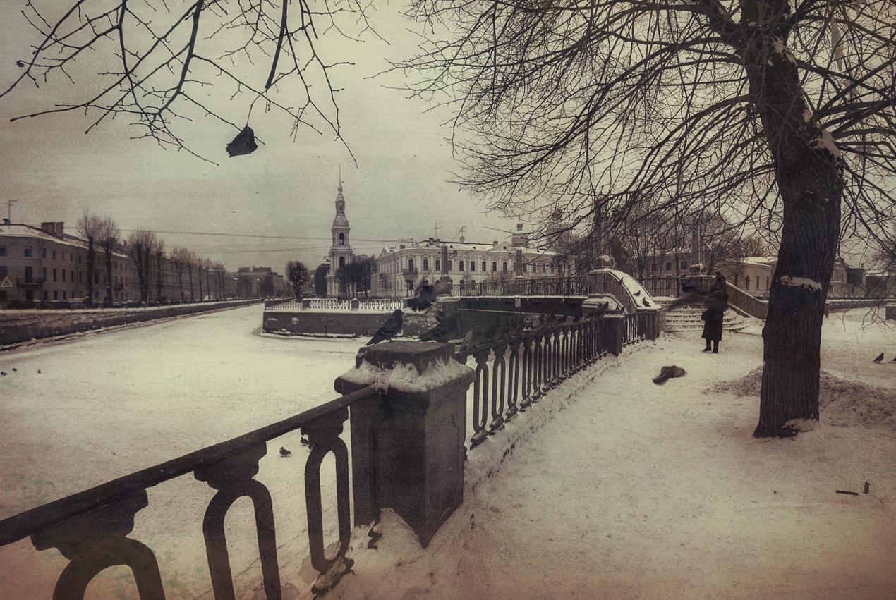 "photo ""***"" tags: landscape, city, winter, Петербург, птицы"