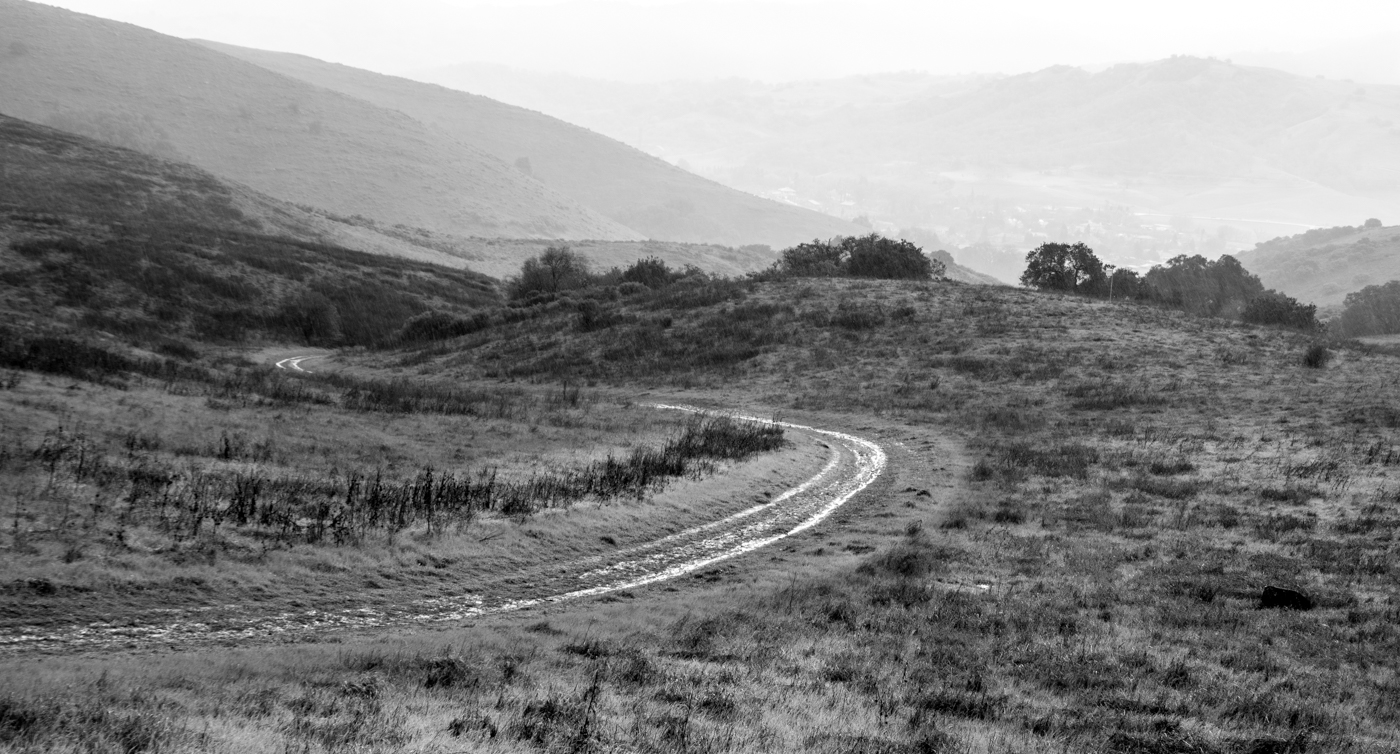 "photo ""Дождь и ветер"" tags: black&white, landscape, Дождь дорога"