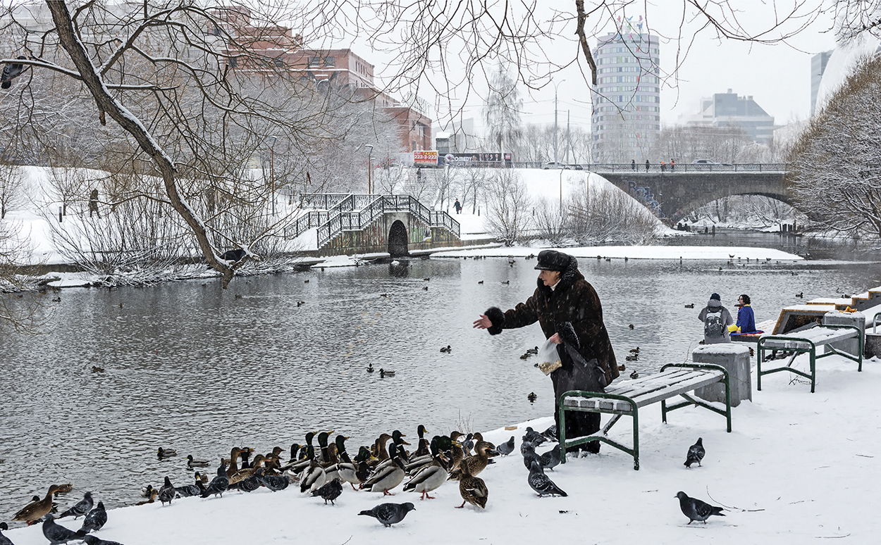 "photo ""***"" tags: city, street, river, winter, woman, птицы"