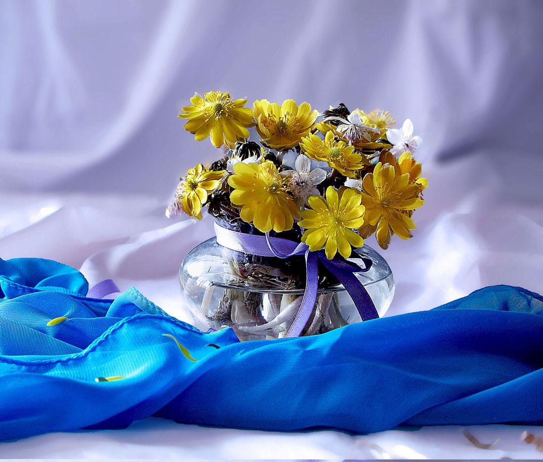 """photo """"***"""" tags: still life, цветы."""