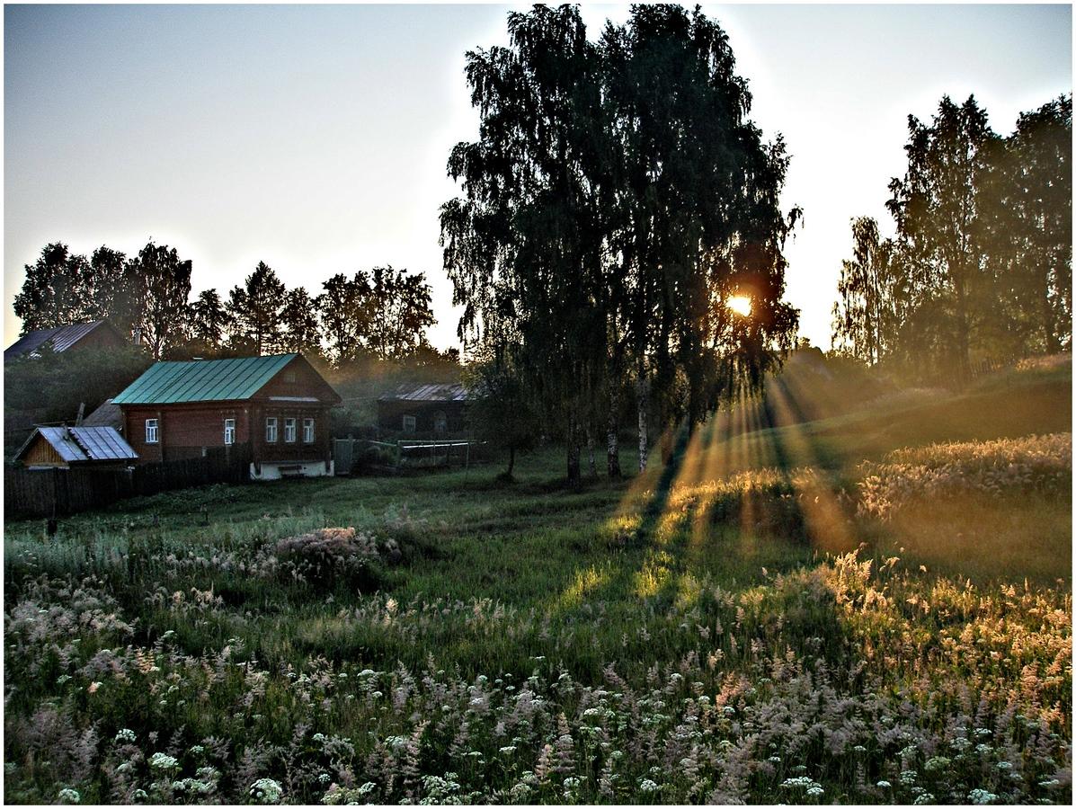 Картинки утро в деревне летом