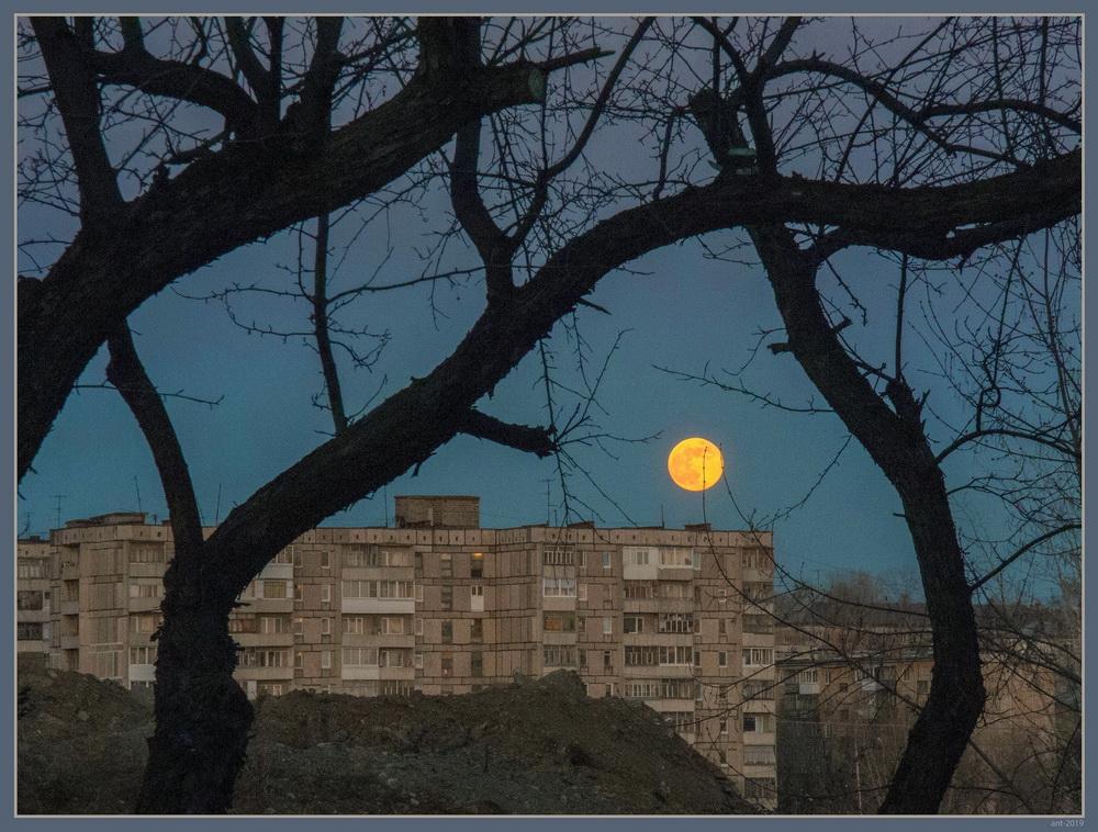 "photo ""***"" tags: landscape, Moon, деревья, дом"