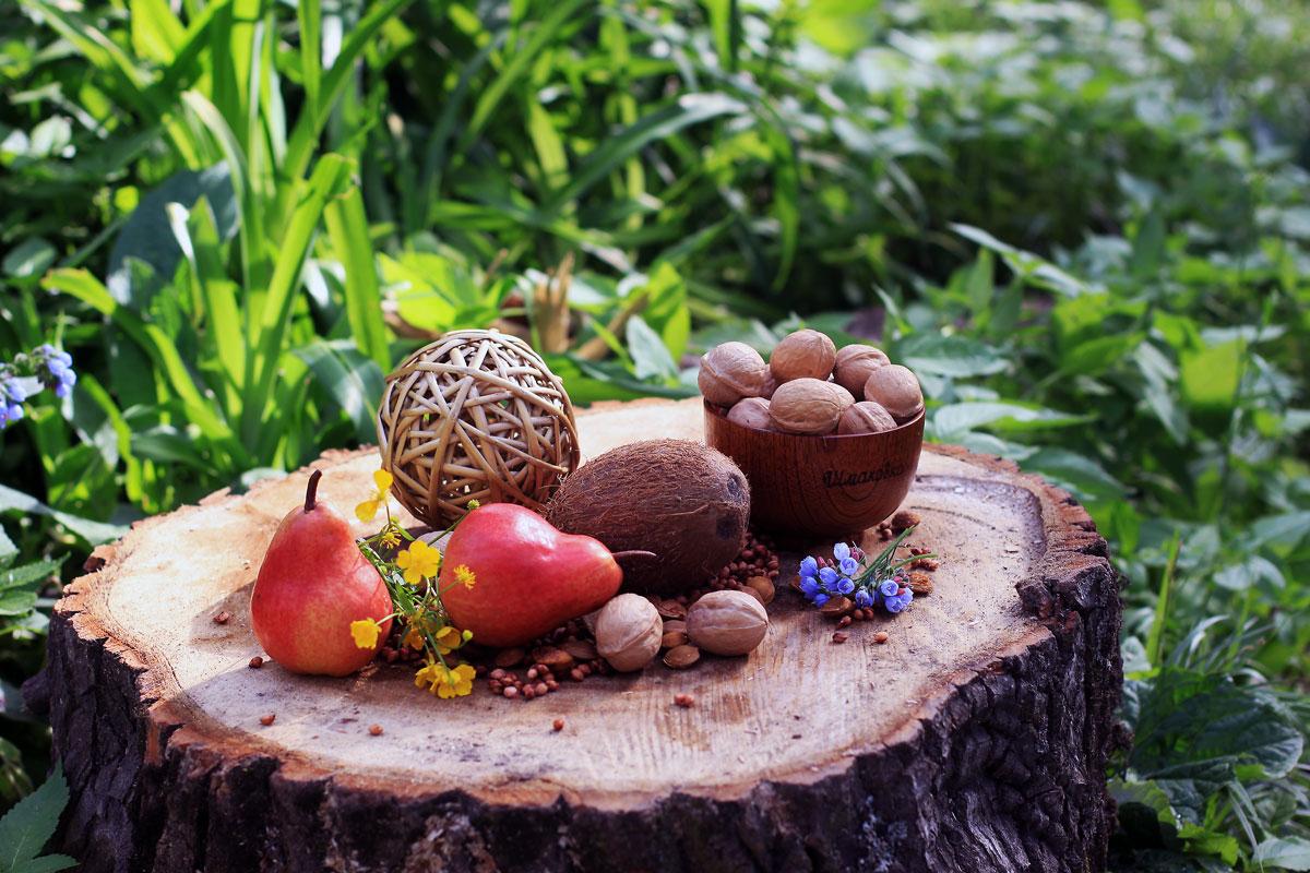 """фото """"Однажды в лесу"""" метки: натюрморт, краски., лес, лето"""