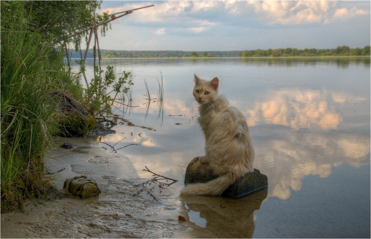 """photo """"***"""" tags: portrait, clouds, summer, water"""
