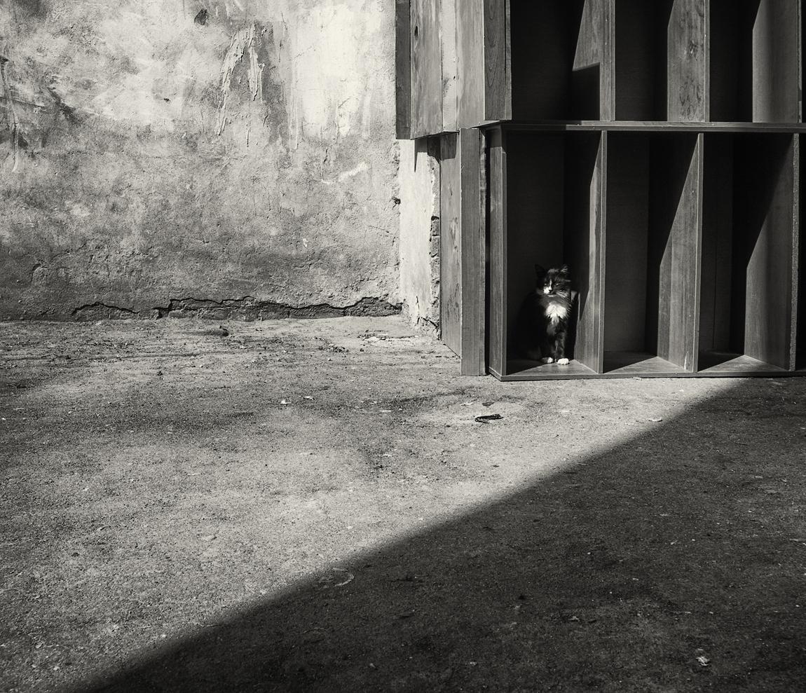 "фото ""О тёмном, светлом и углах :)"" метки: стрит-фото, Петербург, свет и тень"