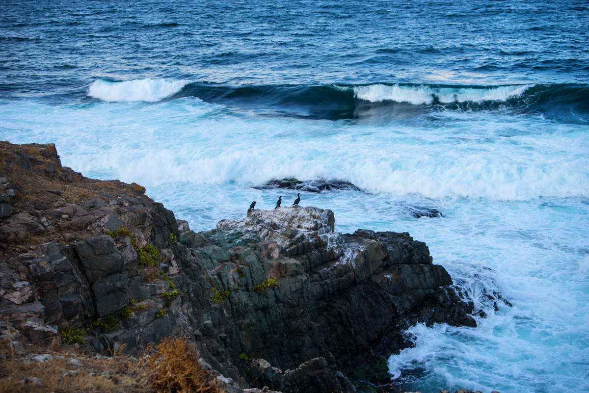 "photo ""***"" tags: nature, landscape, travel, rocks, sea, птицы"