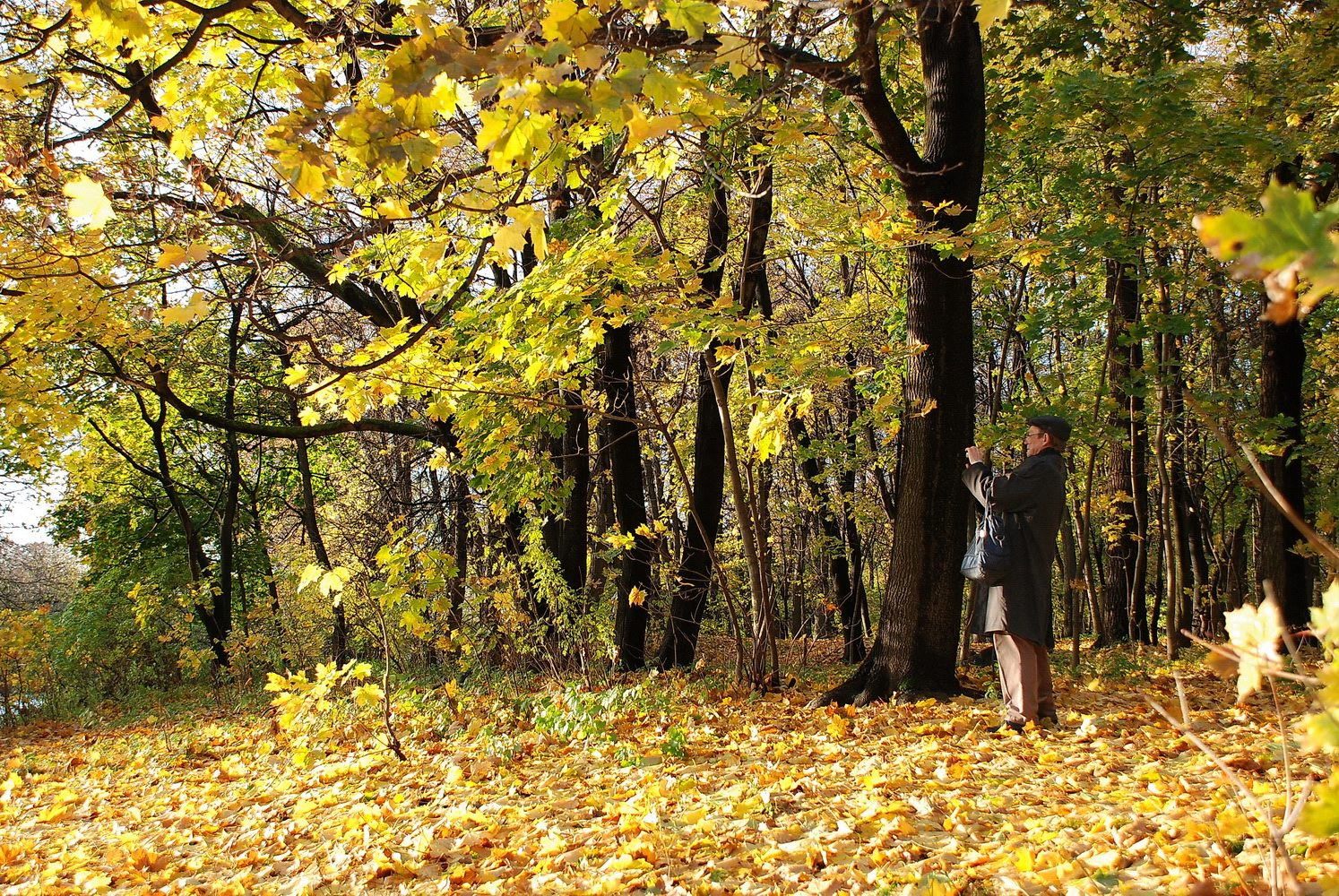 """photo """"***"""" tags: landscape, genre, Анатолий, Фролов, фотограф"""