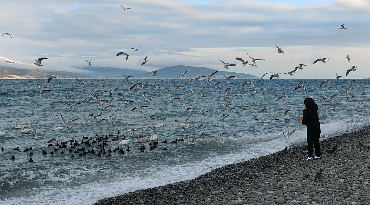 "photo ""The Black Sea"" tags: misc.,"