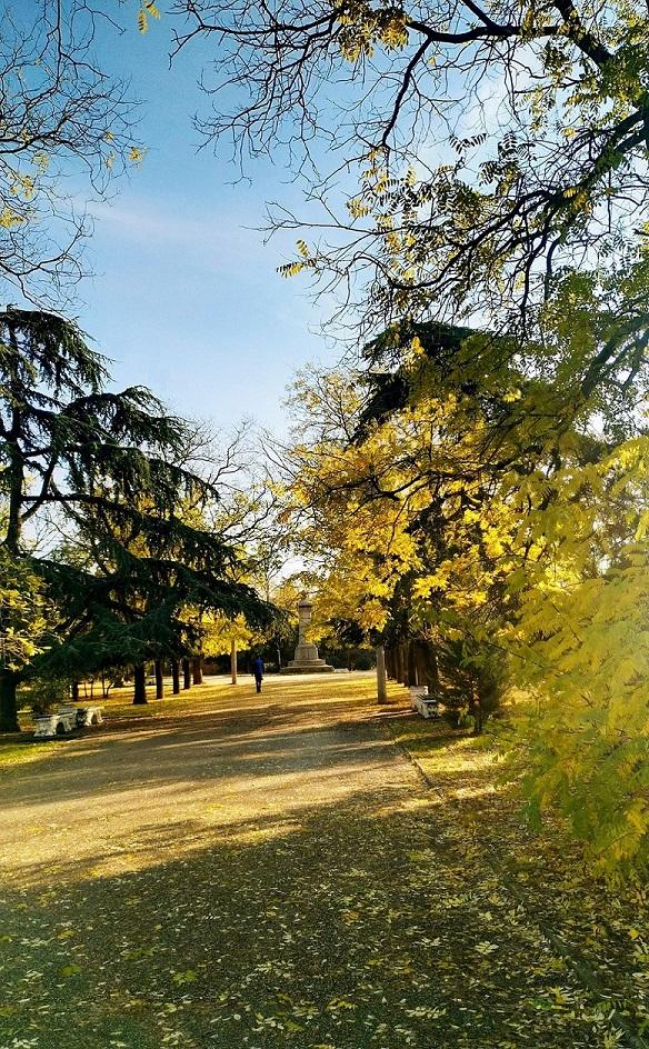 """photo """"***"""" tags: landscape, nature, travel, autumn, forest, sunset, Севастополь, закаты"""