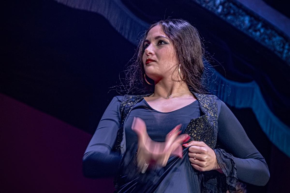 "photo ""Flamenco in Theater"" tags: genre,"